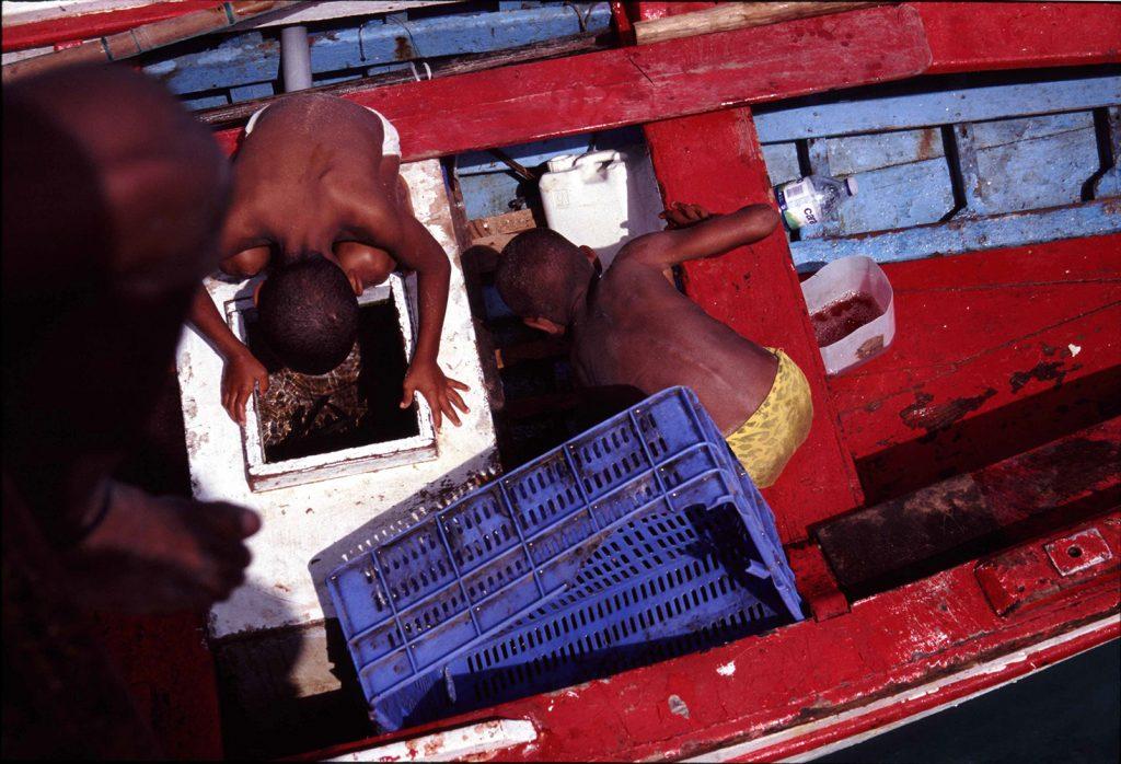 Sal – Miudos no barco